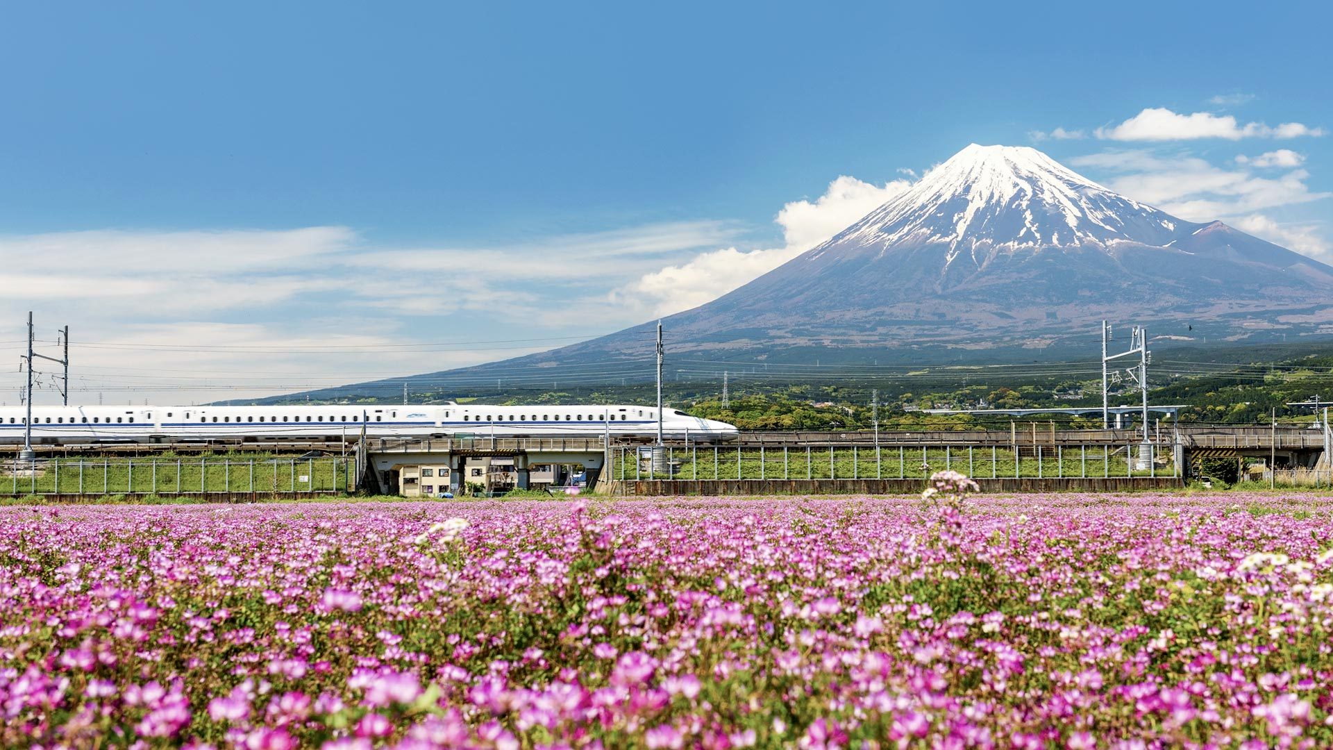 Wallpaper mountains train spring Japan flowering Gunma